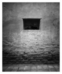 Sibiu - 01.06.2014