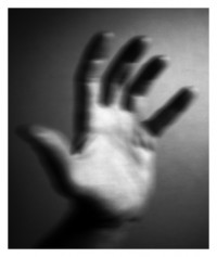hand / slit - 12.10.2014