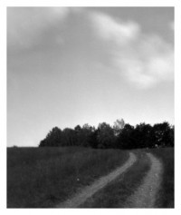 landscape brebu - 13.07.2014