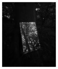 Spiegel im Wald - 18.05.2014