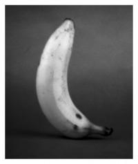 Banana - 24.08.2014