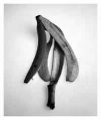 Bananenschale - 27.01.2015
