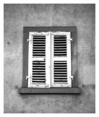 Fenster - 28.01.2015
