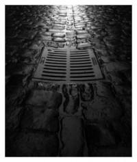 cubblestones - 29.06.2014