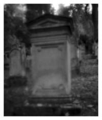 Friedhof - 31.10.2014